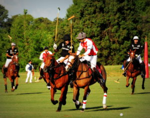 Polo_in_Argentina